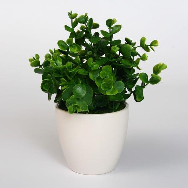 Sztuczna roślina w doniczce Green Money