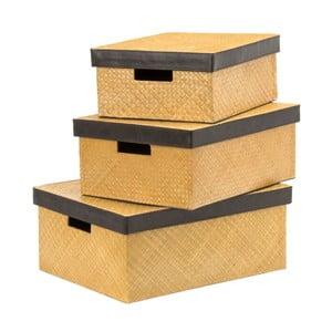 Zestaw 3 pudełek Pandanus