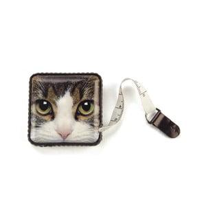 Miarka Tabby Cat