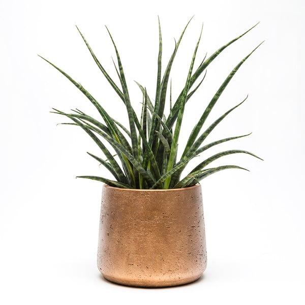 Kamienna doniczka Copper Planter