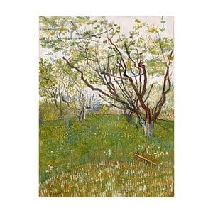 Obraz Vincenta van Gogha - Flowering Orchards, 50x40 cm