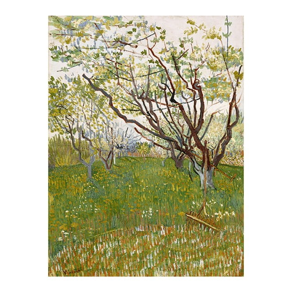 Obraz Vincenta van Gogha - Flowering Orchards, 50x40 cm