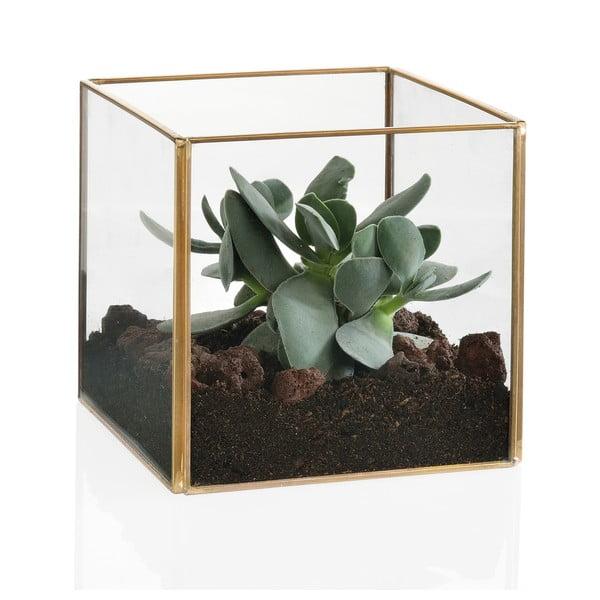 Terrarium Cube Gold