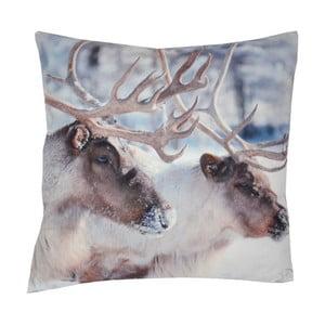 Poduszka Animals Deers, 42x42 cm
