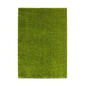 Dywan Harmonie 910, zielony, 120x170 cm
