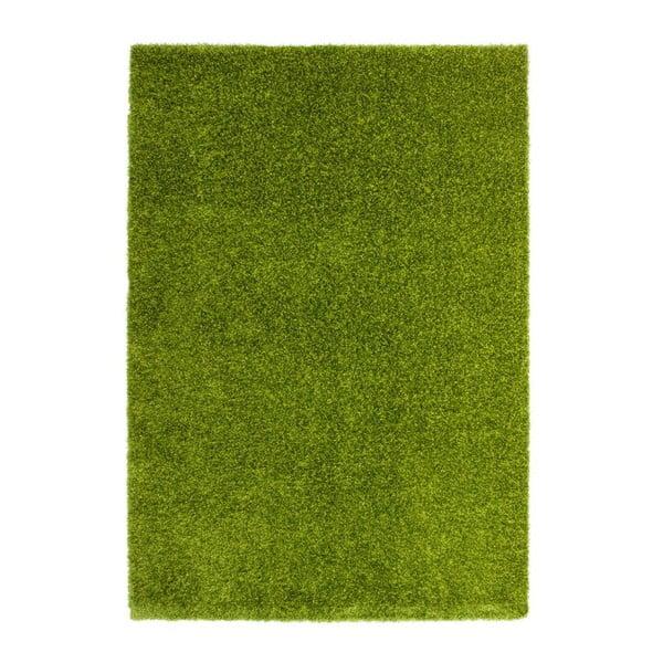 Dywan Harmonie 910, zielony, 80x150 cm