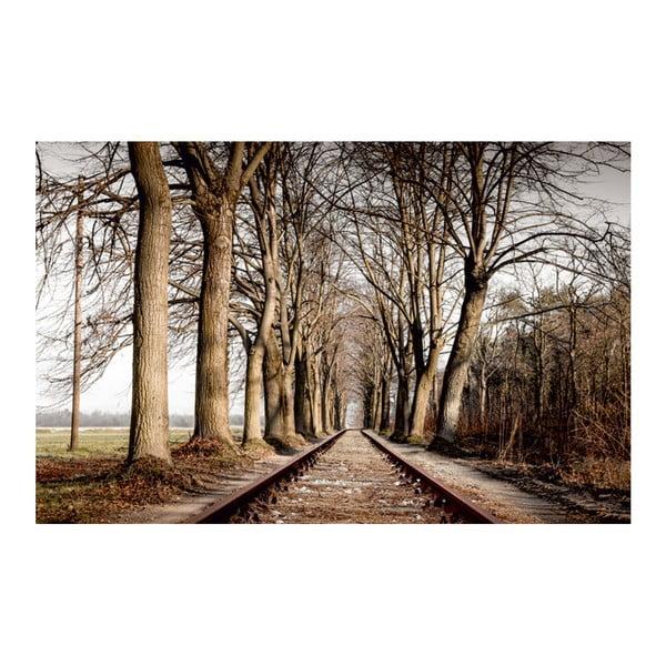 Obraz W drodze, 70x100 xm