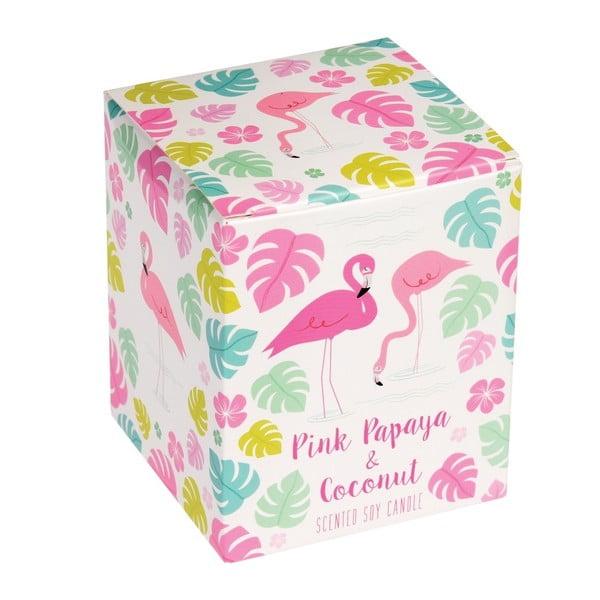Świeczka o zapachu papai i kokosu Rex London Flamingo Bay