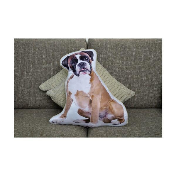 Poduszeczka Adorable Cushions Bokser