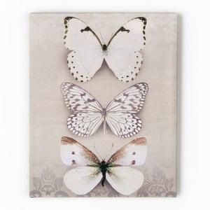 Obraz Graham & Brown Butterfly Trio, 40x50 cm