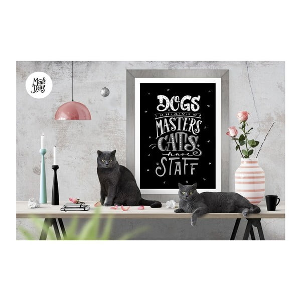 Plakat Dogs Masters Cats Staff BW, A2