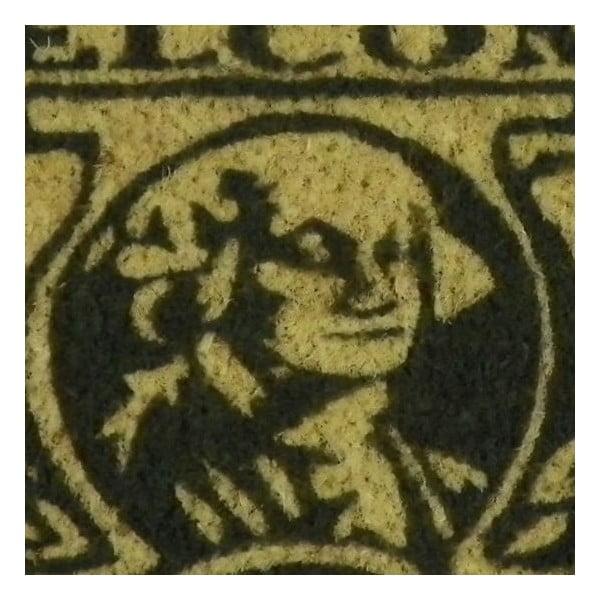 Wycieraczka Dollar, 75x25 cm