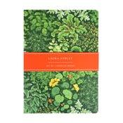 Zestaw 2 zeszytów w linie Laura Ashley Living Wall by Portico Designs, 100 stron