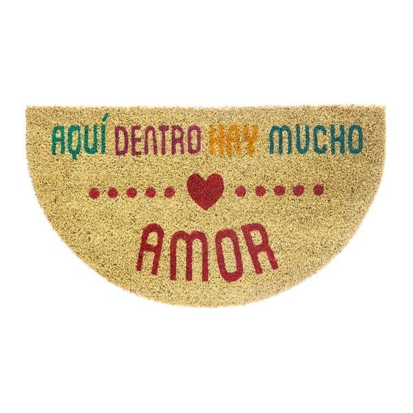 Wycieraczka włókien kokosowych Amor Multi, 40x70 cm