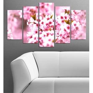 5-częściowy obraz Kwiaty czereśni