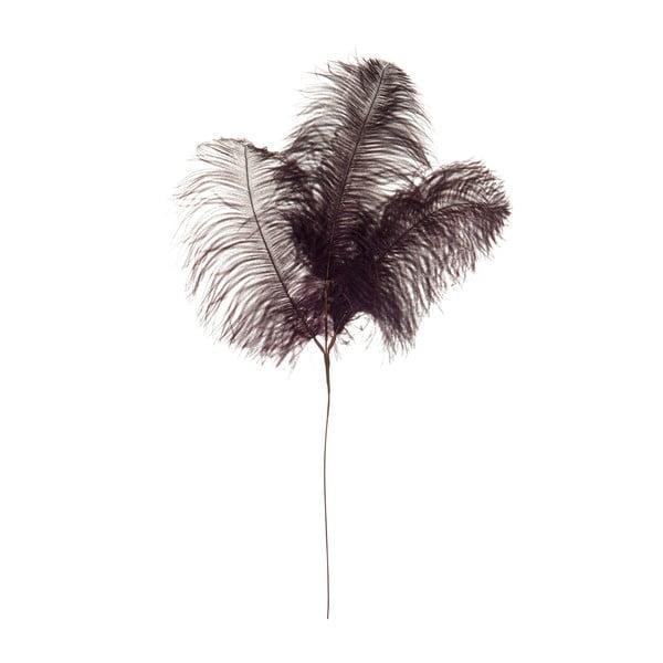 Dekoracyjne pióro strusie Aubergine, wysokość 61 cm