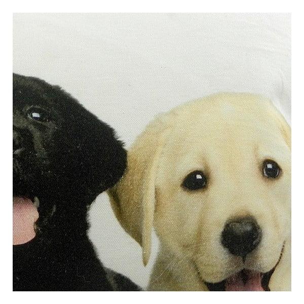 Poduszka Mars&More Puppies Labrador, 50x35 cm