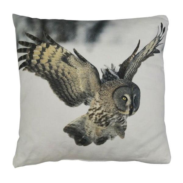 Poduszka Wild Owl, 45x45 cm