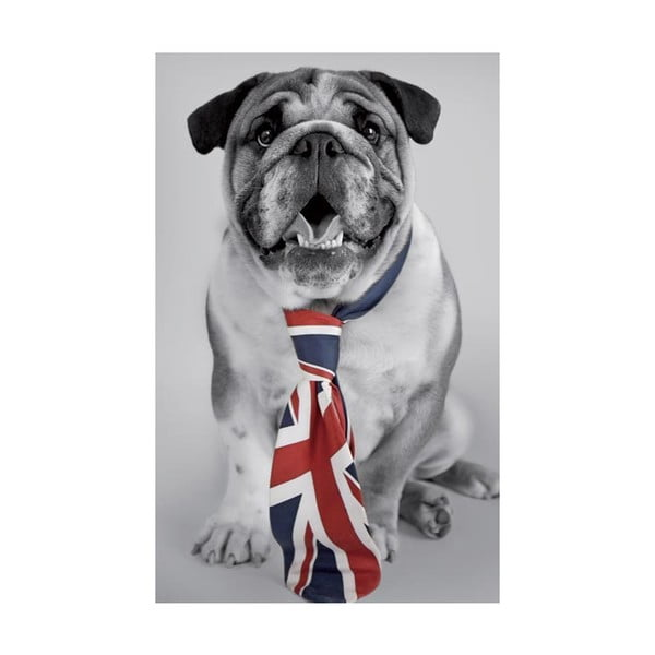 Fotoobraz British Dog, 51x81 cm