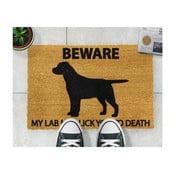 Wycieraczka Artsy Doormats Labrador, 40x60 cm