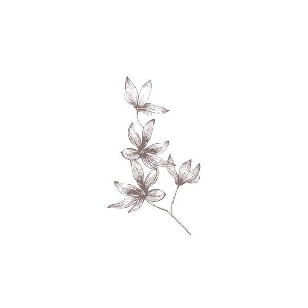 Pościel Alma Gris, 240x220 cm