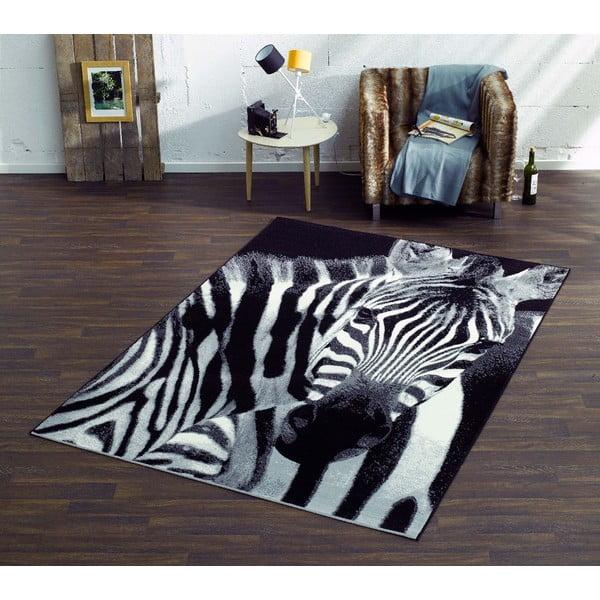 Dywan Safari - zebra, 160x225 cm