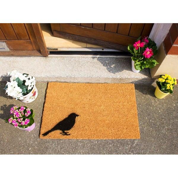 Wycieraczka Artsy Doormats Bird, 40x60 cm