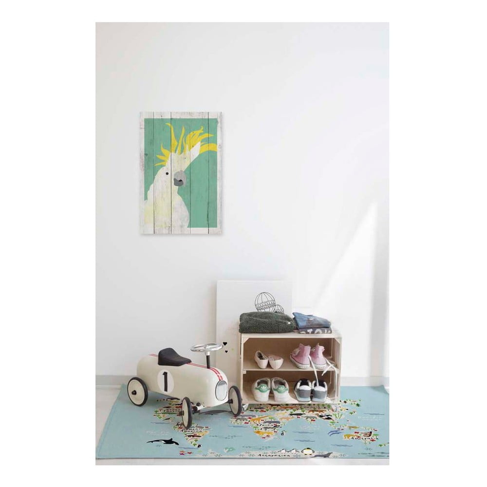 obraz na drewnie little nice things parrot 60x40 cm bonami. Black Bedroom Furniture Sets. Home Design Ideas