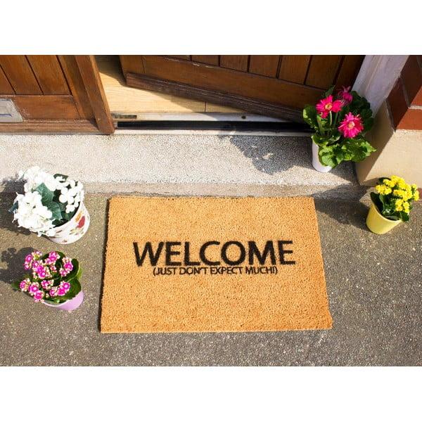 Wycieraczka Artsy Doormats Welcome Don't Expect Much, 40x60 cm