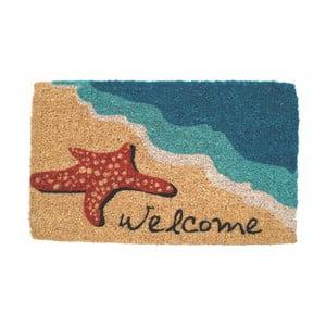 Wycieraczka Entryways Starfish Welcome, 45x75 cm