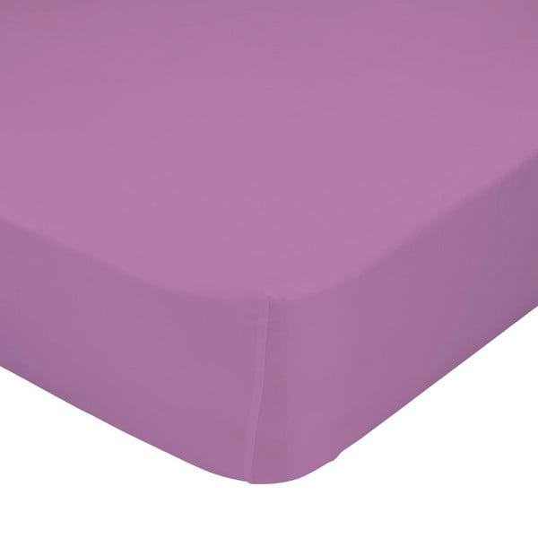 Prześcieradło elastyczne Baleno Purple, 60x120 cm