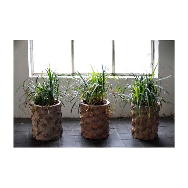 Palmowa donica Palm, 26 cm