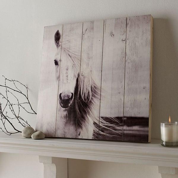 Drewniany obraz Graham & Brown Horse, 50x50 cm