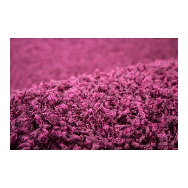 Dywan Perky 278 Purple, 170x120 cm