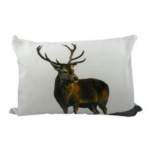 Poduszka Deer 50x35 cm