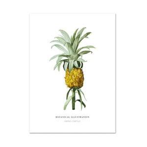Plakat Leo La Douce Ananas Comosus, 21x29,7cm