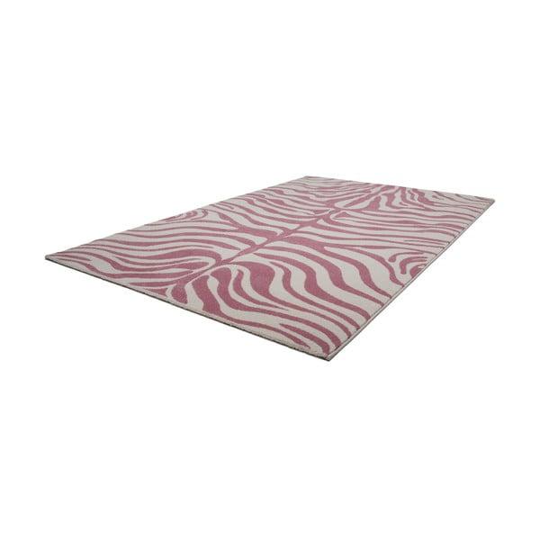Dywan Fusion 160x230 cm, różowa zebra
