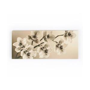 Obraz Graham & Brown Orchid Branch,100x40cm