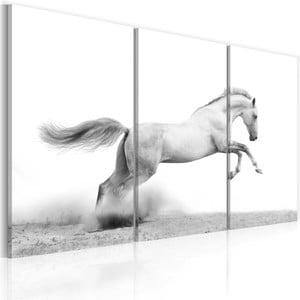 Wieloczęściowy obraz na płótnie Bimago Horse, 80x120cm
