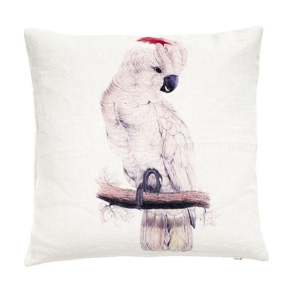 Poszewka na poduszkę Parrot, 45x45 cm