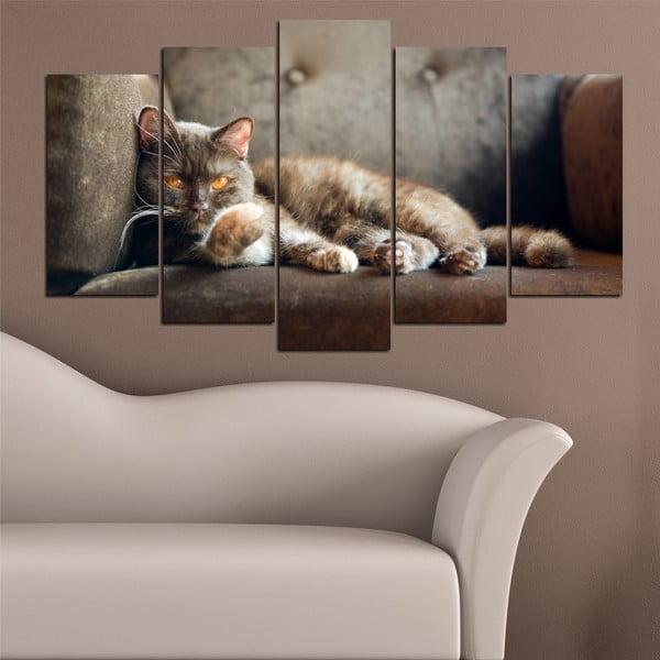5-częściowy obraz Koci