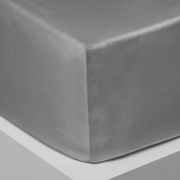 Prześcieradło elastyczne Iced Bloom, 160x200 cm