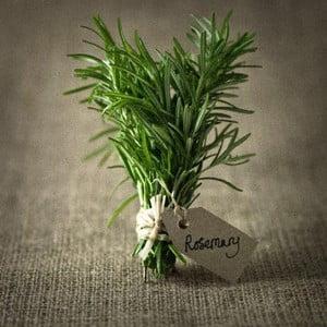 Obraz DecoMalta Rosemary, 30x30cm