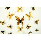 Zestaw 18 naklejek elektrostatycznych 3D Fanastick Butterflies Yellow