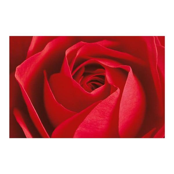 Plakat wielkoformatowy La Rose, 175x115 cm