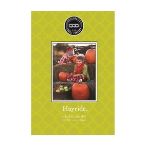 Woreczek zapachowy o zapachu wanilii, goździków i cynamonu Creative Tops Hayride