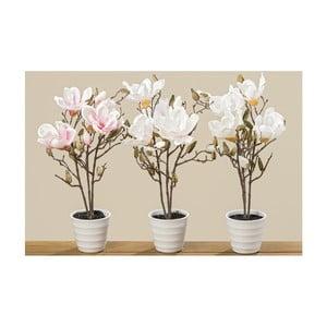 Zestaw 3 doniczek ze sztucznymi magnoliami Boltze, wys. 50 cm