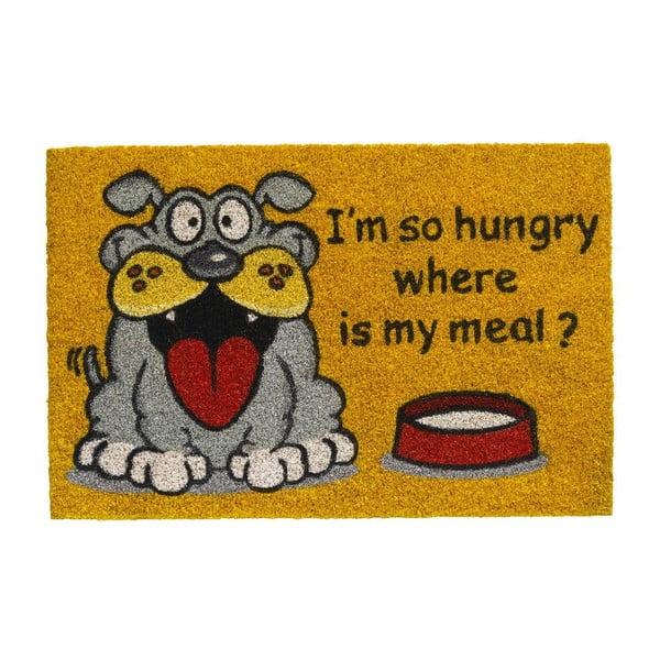 Wycieraczka Hamat Where Is My Meal, 40x60 cm