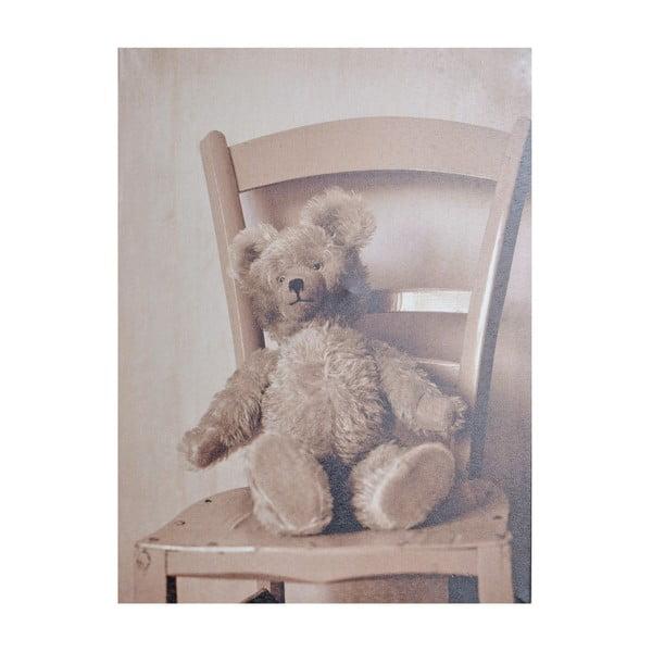 Obraz Niedźwiedź, 40x30 cm