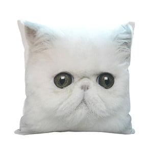 Poduszka White Cat, 45x45 cm